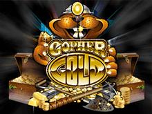 Популярный игровой автомат Gopher Gold от Microgaming